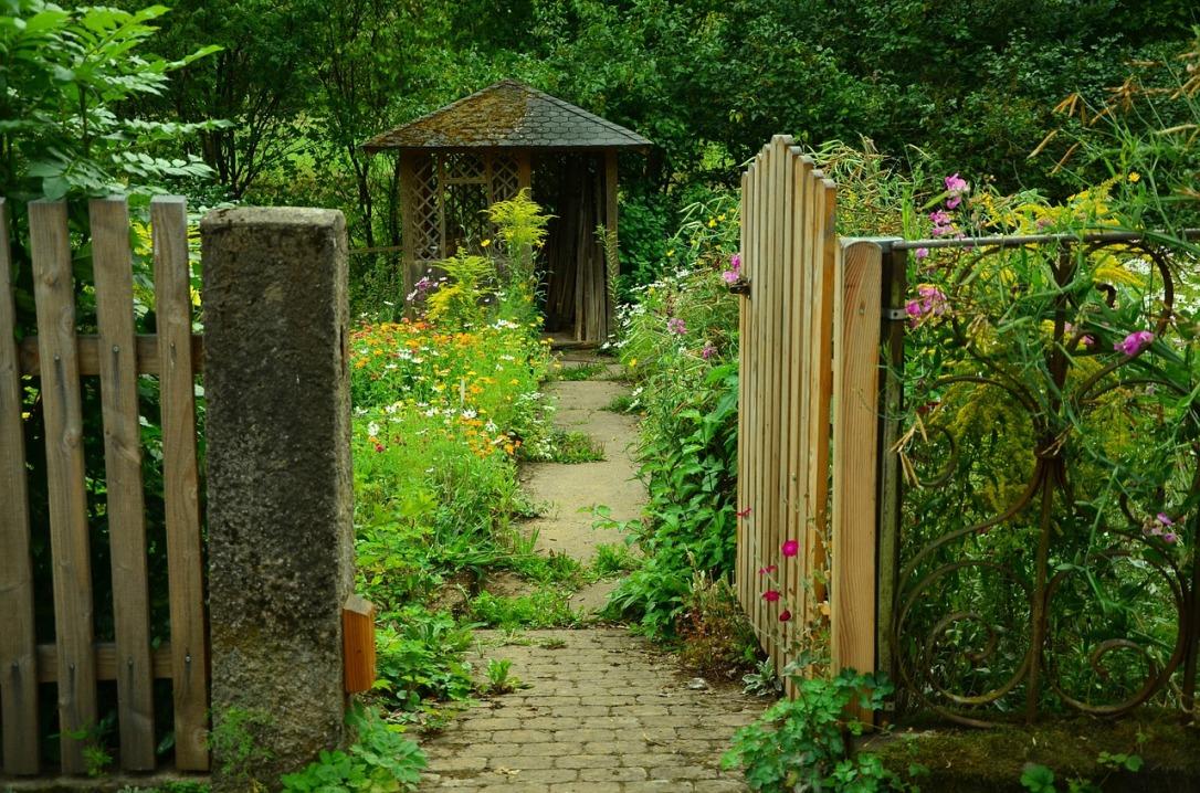garden-910946_1280.jpg